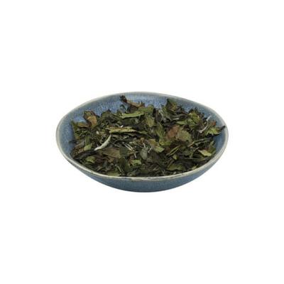 Geniet van de verfijnde smaak van losse thee